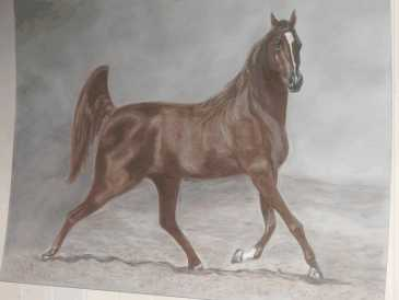 Photo: Sells Oil CABALLOS REALIZADOS EN OLEO, OLEO PASTEL, - Contemporary