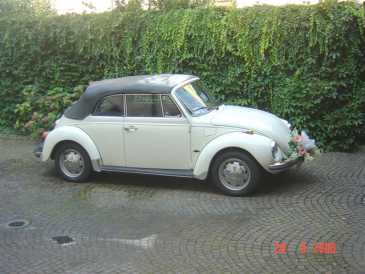 Photo: Sells Collection car VOLKSWAGEN - MAGGIOLONE 1303