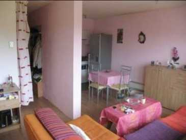 Photo: Rents 2 bedrooms apartment 50 m2 (538 ft2)