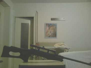 Photo: Sells Toy and model GAMO - CARABINE A PLOMD + LUNETTE