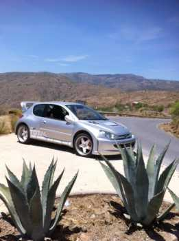 Photo: Sells Collection car PEUGEOT - 206