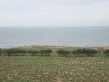 Photo: Sells Land 80,000 m2 (861,113 ft2)
