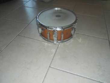Photo: Sells Percussion SONOR - SONOR PHONIC