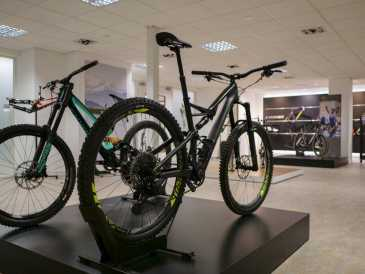 Photo: Sells Bicycle CITROEN - S-WORKS STUMPJUMPER 27.5