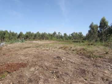 Photo: Sells Land 17,000 m2 (182,987 ft2)