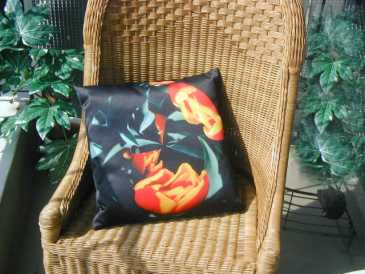 Photo: Sells 10 Decoratives objects ART CUSHIONS